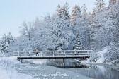 Woman skiing over Bridge in Hagadalen, Uppsala