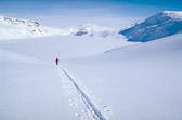 Anders approaching NÊvertind, Lappland