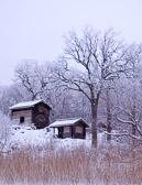 Winter cabins, Krusenberg, Uppsala